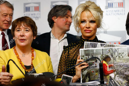 Pamela Anderson, actress and animals rights defender, right, flanked with French Deputy Laurence Abeille, left, displays photos during a news conference at the French National Assembly to protest the force-feeding of geese used in the production of foie gras, in Paris, France