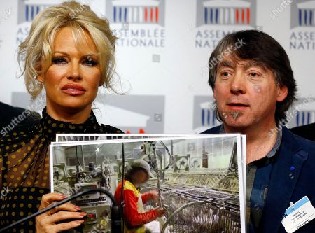 Stock Image of Pamela Anderson, actress and animals rights defender, left, displays photos with head of Global Action in the Interest of Animals (GAIA) Michel Vandenbosch during a news conference at the French National Assembly to protest the force-feeding of geese used in the production of foie gras, in Paris, France