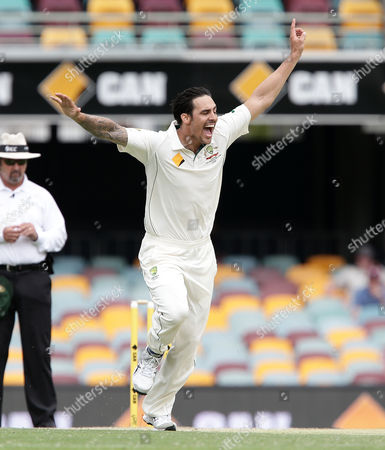 Mitchell Johnson Australia's Mitchell Johnson appeals for the wicket of New Zealand's Martin Guptill during day four of their first cricket test match in Brisbane, Australia