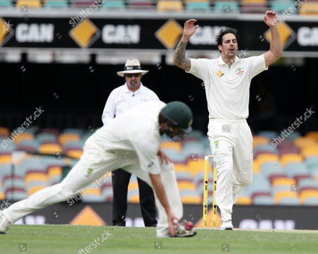 Mitchell Johnson Australia's Mitchell Johnson, right, reacts to teammate Joe Burns, left, dropping a catch during play on day four of their first cricket test match against New Zealand in Brisbane, Australia