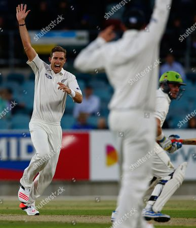 Stock Photo of Tim Southee, Mike Hussey Black Caps captain Tim Southee appeals for caught behind on Australia's Mike Hussey during their PM'S Xl cricket match in Canberra, Australia