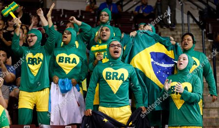 Stock Image of Brazil supporters cheer before the start of the men's -66kg gold medal judo match between Brazil's Charles Chibana and Canada's Antoine Bouchard at the Pan Am Games in Mississauga, Ontario