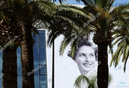 The official banner depicting actress Ingrid Bergman is seen between trees ahead of the 68th international film festival, Cannes, southern France, . The festival opens on Thursday, May 13 and runs until Sunday, May 24