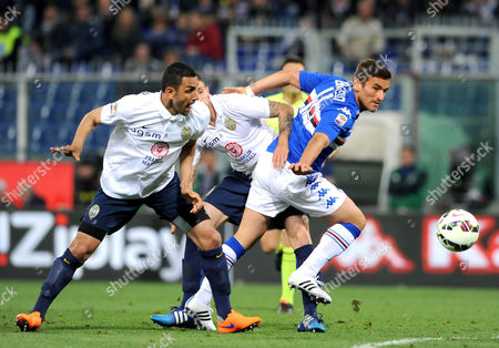 Sampdoria's Gonzalo Bergessio goes for the ball followed by Hellas Verona's Rafael Marques and Leandro Greco during a Serie A soccer match at the Luigi Ferraris stadium in Genoa, Italy