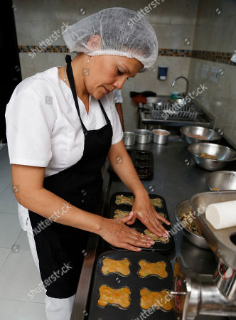 """Stock Picture of Chef Alba Garcia prepares dog snacks at the """"Pet Gourmet Bakery & Boutique"""" in Bogota, Colombia, . The owners of the only dog gourmet bakery in Colombia started their business on the internet, selling birthday cakes for pets, before opening their storefront business last year"""