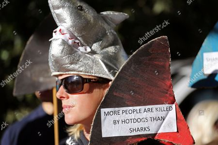 A woman protester wearing a hat featuring a shark, gahters for a rally with others against the Western Australian government's catch and kill shark policy adopted by Premier Colin Barnett, outside the mining Indaba, in Cape Town city, South Africa, . The West Australian government's new culling policy was announced in December, following seven fatal attacks off the Western Australian coast in three years
