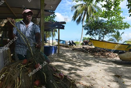 Fisherman Ervan James untangles a net that he says can inadvertently ensnare about six leatherback turtles in a single night at the peak of six-month nesting season, on the beach of the northeast village of Grande Riviere, Trinidad. James, a veteran fishermen from Grande Riviere, recognizes turtle tourism has been a boon for his village, but he and other fishermen are calling for the government to compensate them for not casting wide gill nets during the turtles' nesting season