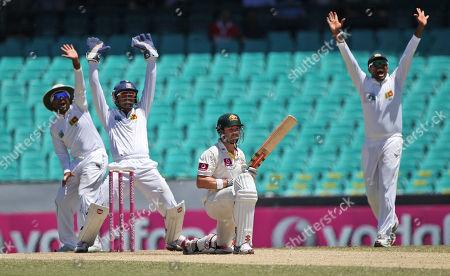 Dinesh Chandimal, Mahela Jayawardene Sri Lanka's Dinesh Chandimal, center, captain Mahela Jayawardene, left, appeal for the wicket of Australia's Ed Cowan on day four of their third cricket test match in Sydney, Australia
