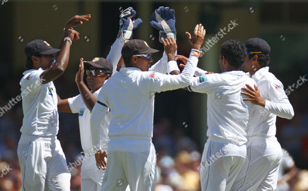 Sri Lanka's teammates celebrate the run out of Australia's Ed Cowan for 4 runs on the second day of their cricket test match in Sydney, Australia, . Sri Lanka made 294 all out in their first innings