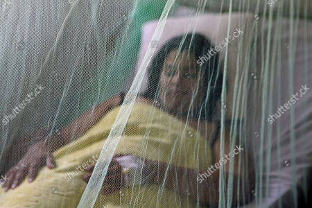 Miriam Torres, 28, veiled by a mosquito net recovers from dengue fever at the Hospital General Barrio Obrero, in Asuncion, Paraguay, . Paraguay health officials said Thursday that the proliferation of the Aedes aegypti mosquito, which transmits dengue, has led to the death of seven people in the past two weeks. The public health minister has ordered that public hospitals, at this time, to give priority to people suffering symptoms of dengue fever