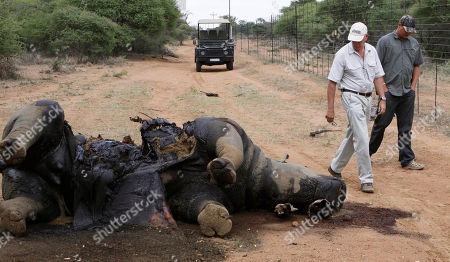 "Miles Lappeman, Marc Lappeman Miles Lappeman, owner of Finfoot Lake Reserve near Tantanana, South Africa, and his son Marc, right, walk past the carcass of one of eight rhino killed by poachers . Howard Buffett, a son of investor Warren Buffett has pledged nearly $24 million for protecting rhinos in South Africa, earmarking the money for ranger teams, sniffer dogs and other security measures in what he hopes can be a robust model for fighting what he calls the ""overwhelming"" problem of poaching in parts of Africa"