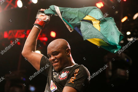 Anderson Silva, Stephan Bonnar Anderson Silva, from Brazil, celebrates after defeating Stephan Bonnar, from the United States, during their light heavyweight mixed martial arts bout at UFC153 in Rio de Janeiro, early