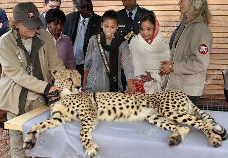 Pratibha Patil Indian President Pratibha Patil, second right, holds the arm of her grand-daughter as they look at a cheetah during a visit to the Cheetah Outreach Project near Cape Town, South Africa. Patil is on an official visit to South Africa