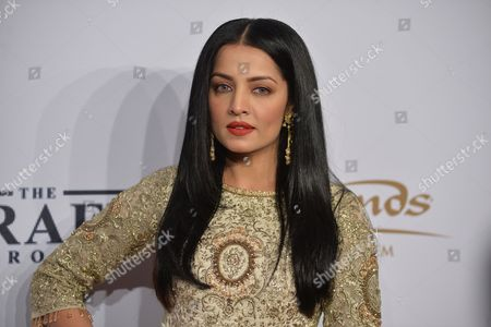 Stock Image of Celina Jaitly