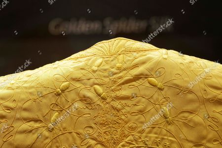 Stock Image of Details are seen of a spider silk cape, designed by Simon Peers and Nicholas Godley, on display at the Victoria and Albert Museum in London, . The cape is woven and embroidered in Madagascar and is made from the silk of more than a million female Golden Orb Weaver spiders collected in the highlands of Madagascar. The hand-woven textile is naturally golden in colour and took over four years to create