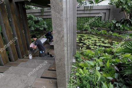 Garden designer James Wong, left, puts the finishing touches to the Tourism Malaysia Garden at the Chelsea Flower Show in London, . The show garden design has been inspired by the winding jungle streams and rich traditional architecture of the Malaysian archipelago. The annual Chelsea Flower Show attracts many thousands of visitors every year who are interested in the horticultural event