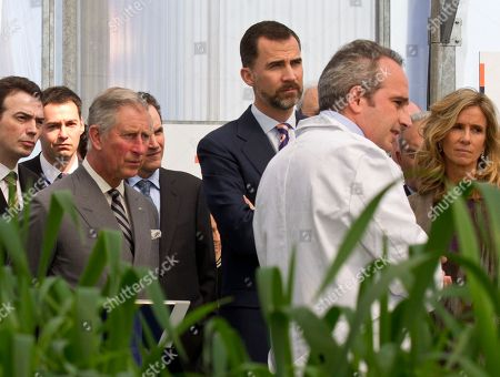 Prince Charles, Prince Felipe, Cristina Garmendia Britain's Prince Charles, centre left, and Spain's Crown Prince Felipe, center, visit a greenhouse with Spain's Science and Innovation minister Cristina Garmendia, right, during a tour of the Repsol Technology Center on the outskirts of Madrid, . Prince Charles is on an official visit Spain. In the greenhouse are energy-rich triterpenoids found in the Euphorbia plant, a potential crop for third generation biofuels