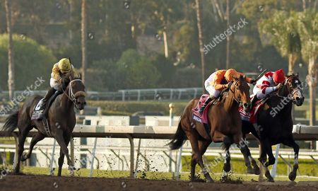 BEHOLDER (Gary Stevens, centre) beats SONGBIRD (right) in The Longines Breeders Cup Distaff Santa Anita USA