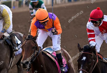 Mike Smith, Gary Stevens Mike Smith, left, celebrates after Songbird defeated Beholder, with Gary Stevens, in the Breeders' Cup distaff horse race at Santa Anita, in Arcadia, Calif