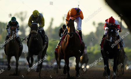 Gary Stevens Gary Stevens celebrates after Beholder, second from right, won the Breeders' Cup Distaff horse race at Santa Anita, in Arcadia, Calif