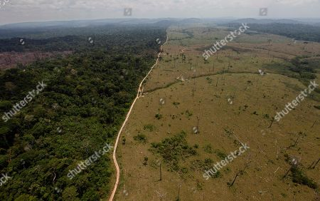 A deforested area is seen near Novo Progresso in Brazil's northern state of Para. Brazil's Environmental Minister Izabella Teixeira announced on May 25, 2012 that President Dilma Rousseff used her line-item veto powers on a congressional bill that weakened the nation's benchmark environmental law protecting the Amazon. Environmentalists wanted Rousseff to veto the entire bill