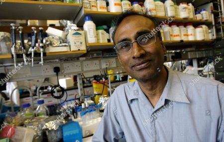 Venkatraman Ramakrishnan Joint winner of the 2009 chemistry Nobel Prize Venkatraman Ramakrishnan, poses in his lab at the Medical Research Council Lab in Cambridge, England, . Ramakrishnan with Thomas Steitz and Israeli Ada Yonath won the 2009 Nobel Prize in chemistry on Wednesday for mapping ribosomes, one of the cell's most complex components, at the atomic level.The Royal Swedish Academy of Sciences said their work has been fundamental to the scientific understanding of life and has helped researchers develop antibiotics cures for various diseases . Yonath is the fourth woman to win the Nobel chemistry prize and the first since 1964 when Dorothy Crowfoot Hodgkin of Britain received the prize