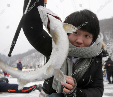A South Korean angler Kim Lee-chun catches a trout through a hole created in the surface of a frozen river during a contest to catch trout in Hwacheon, South Korea, . The contest is part of an annual ice festival which draws over 1,000,000 visitors every year