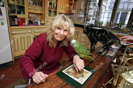 Carla Lane at her home, Sussex. Here with her cat Daniel, who is 28 years old  and one of her many parrots called Leo.