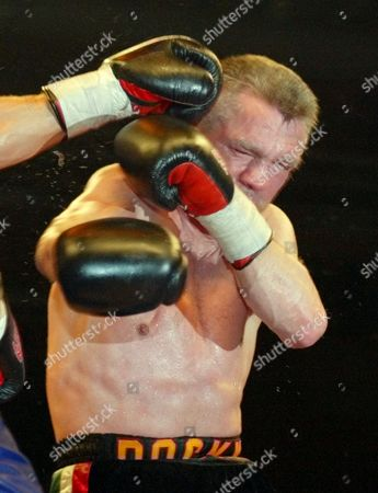 Editorial picture of GERMANY BOXING, STUTTGART, Germany
