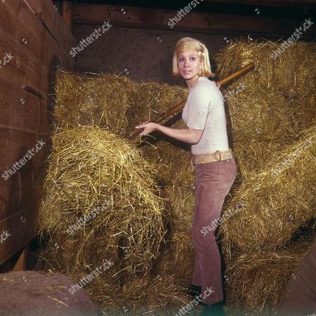 'Weavers Green'  - Sheila Fearn