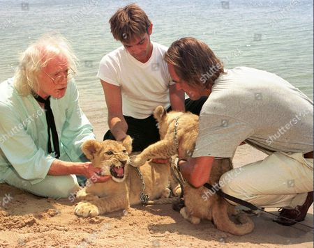 "British actors Richard Harris, left, John Michie, center, and conservationist Tony Fitzjohn play with lion cubs on the beach in Cannes to promote the up-coming film ""To Walk With Lions"" directed by British director Carl Schultz during the 51st International Film Festival"