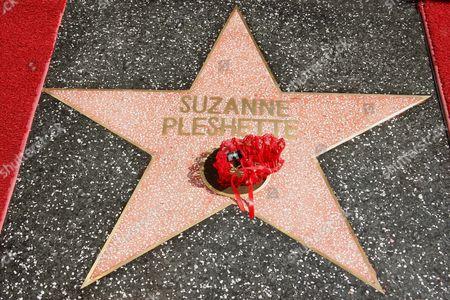 Suzanne Pleshette Star with garter