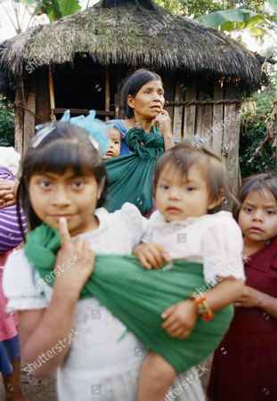 Elena Gomez, in background, with three of the twelve children she was left with after the Mexican Army killed her husband Gilberto Jimenez Hernandez on Sunday in the village of La Grandeza. The government claims Hernandez was killed in a shootout, his widow claims he was shot in the head as he lay on the ground with his hands bound. The photo was taken on in Mexico