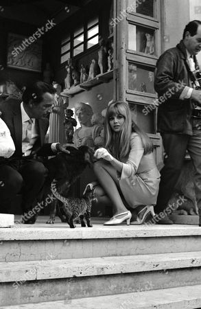 Swedish-born actress Britt Ekland and Italian actor Rossano Brazzi make friends with a cat and a dog that showed up on the set of a new film, ?The Bobo,? during a break in the shooting in Rome?s Cinecitta studios, . Miss Ekland plays the starring female role in the new movie, opposite her husband Peter Sellers and Mr. Brazzi