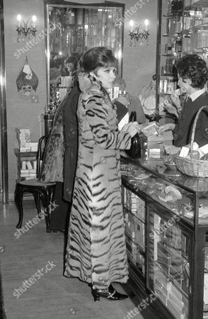 Gina Lollobrigida Italy's Gina Lollobrigida, wearing a maxi-furcoat, is Christmas shopping in downtown Rome on . Miss Lollobrigida announced a postponement, until next spring, of her planned marriage to New York realtor George Kaufman