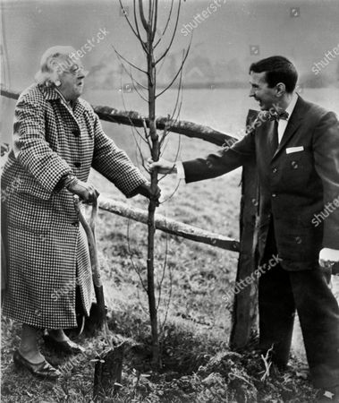 British actress Dame Margaret Rutherford and her adopted son, writer Gordon Langley Hall, hold the stem of a tree they just planted in the garden of Mrs. Ruthford's home at Beecholme, Old Heathfield, Sussex, England, 1962. Hall later changed his sex in 1968 and was to marry an Afro-American man from South Carolina, John Paul Simmons