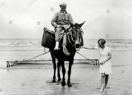 Princess Josephine Charlotte, 11 years old daughter of King Leopold of the Belgians, is now on holiday here at La Panne. She is staying in the royal palace occupied by the Belgian Royal family here during the war. Princess Josephine Charlotte leading in a mule and rider from a shrimping expedition at La Panne, Belgium, on