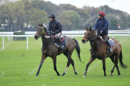 Stock Picture of Coneygree and Nico De Boinville [left] working on the track at Haydock in preparation for the Betfair Chase with Carruthers and Lily Bradstock.