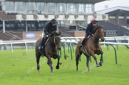Coneygree and Nico De Boinville [left] working on the track at Haydock in preparation for the Betfair Chase with Carruthers and Lily Bradstock.