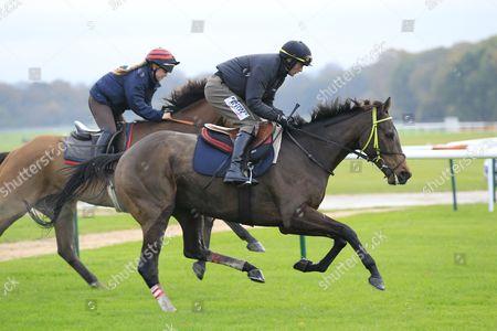 Editorial image of Horse Racing - 09 Nov 2016