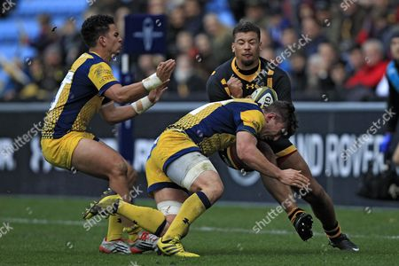 Wasps' Guy Armitage (right) in action with Worcester Warriors' Sam Lewis (centre) and Afeafe Haisila Lokotui Wasps v Worcester Warriors - Anglo-Welsh Cup - 13/11/2016 - Ricoh Arena - Coventry - UK Mandatory Credit: Ian Smith/Seconds Left Images