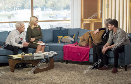 Stock Photo of Phillip Schofield and Holly Willoughby with Penny the Pampered Pig and Owners Hannah Kembrey and Mike Baxter
