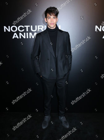 Editorial image of 'Nocturnal Animals' film screening, Arrivals, Los Angeles, USA - 11 Nov 2016