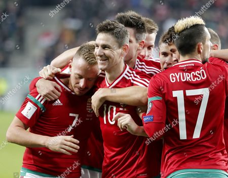Zoltan Gera #10) of Hungary celebrates his goal with Balazs Dzsudzsak #7 and fellow teammates of Hungary