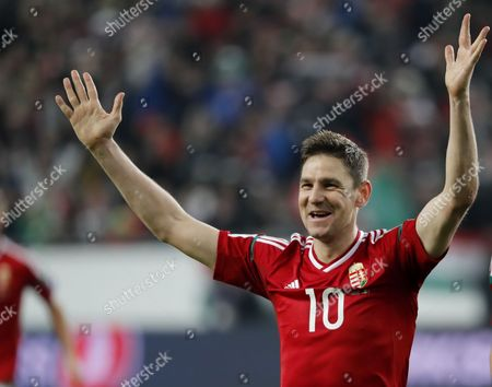 Zoltan Gera of Hungary celebrates his goal