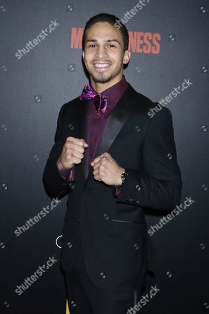 Editorial image of 'Bleed for This' film premiere, Arrivals, New York, USA - 14 Nov 2016