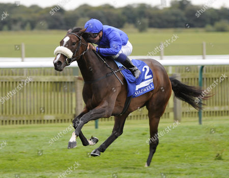 Horse Racing - The Cambridgeshire Festival 2012 - Newmarket Certify ridden by Mickael Barzalona trained by Mahmood Al Zarooni Godolphin win the Group 1 Shadwell Fille's Mile