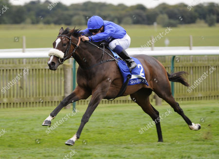 Horse Racing - The Cambridgeshire Festival 2012 - Newmarket Certify ridden by Mickael Barzalona trained by Mahmood Al Zarooni Godolphin win the Shadwell Fille's Mile (Group 1)