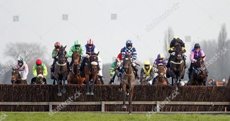 Editorial image of Horse Racing - 26 Nov 2016