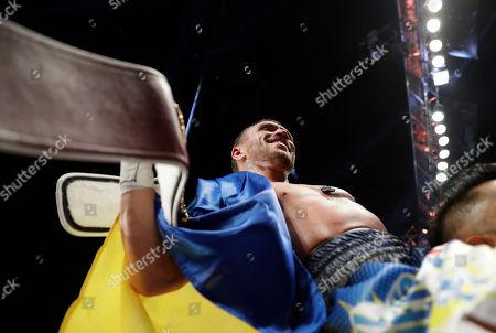 Editorial image of Walters Lomachenko Boxing, Las Vegas, USA - 26 Nov 2016